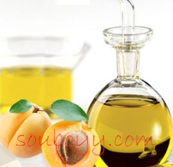 Oil of Apricot