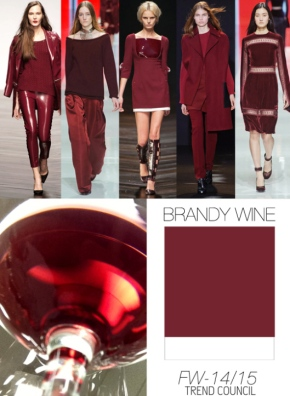 Trend Council FW1415_Color Brandy Wine